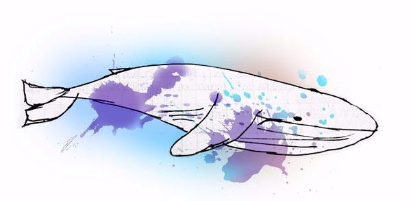 ballena-azul-juego-peligroso